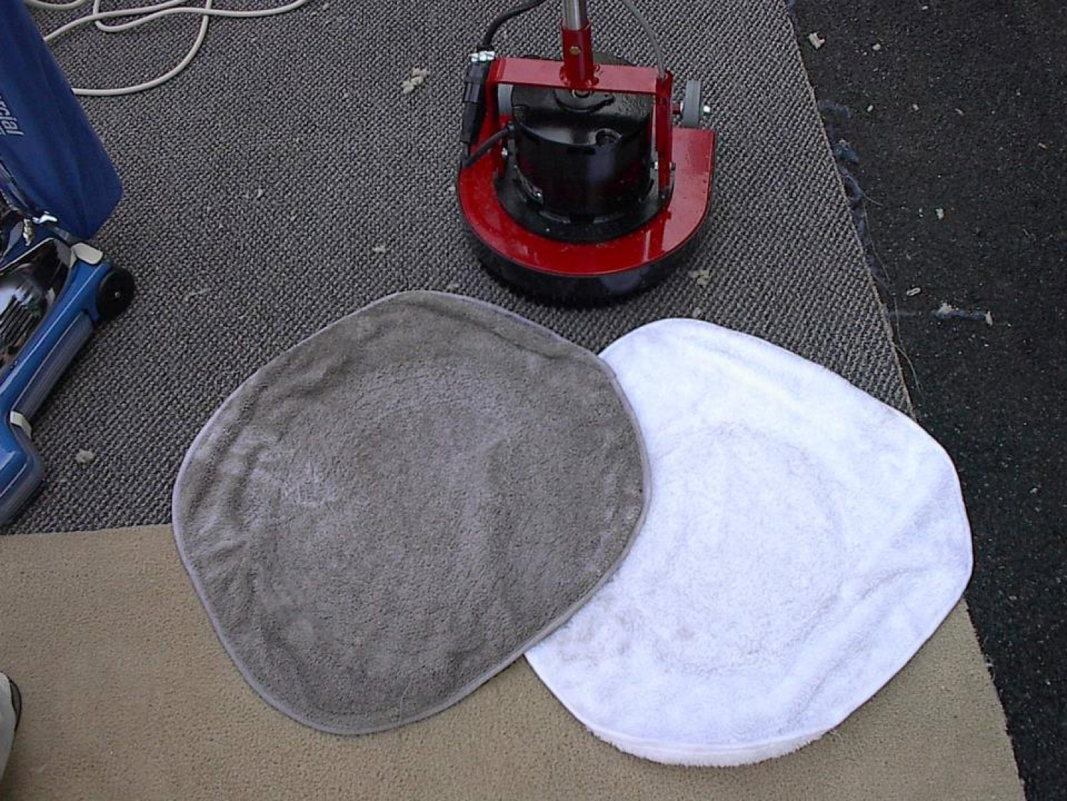 Bonnet Method Carpet Cleaning Wwwallaboutyouthnet