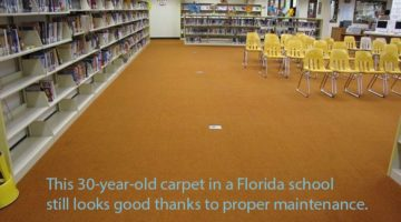 eplace the carpet no wear